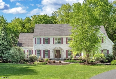 Chester Twp. NJ Single Family Home For Sale: $925,000