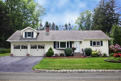 Morris County Single Family Home For Sale: 138 Maple Ave