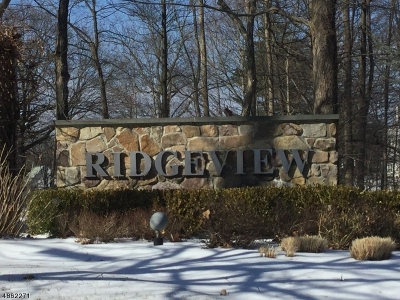 Morris County Single Family Home For Sale: 48 Ridgeview Ln #48