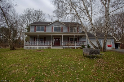 Hardyston Twp. Single Family Home For Sale: 15 Franek Rd