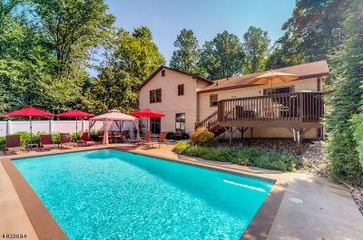 Warren County Single Family Home For Sale: 245 Mount Bethel Rd