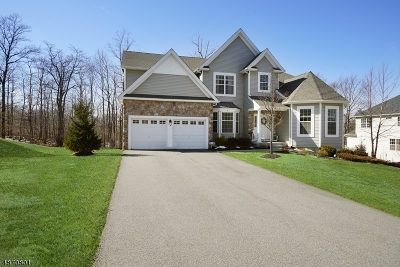 Morris County Single Family Home For Sale: 6 Ruggiero Way