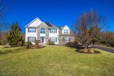 Franklin Twp. Single Family Home For Sale: 5 Pohat Ct
