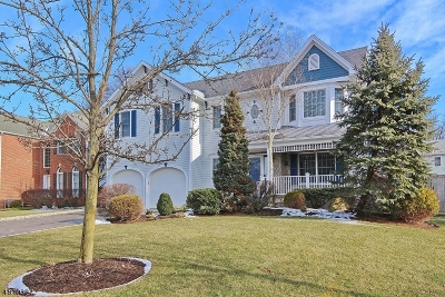 Westfield Town Single Family Home For Sale: 747 Clarence St
