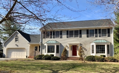 Mendham Twp. NJ Single Family Home For Sale: $825,000