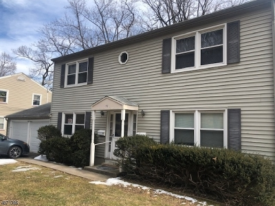 Morris County, Somerset County Rental For Rent: 78 Mt Kemble Ave