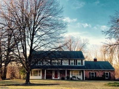 Morristown Town, Morris Twp. Single Family Home For Sale: 11 Deer Chase Rd
