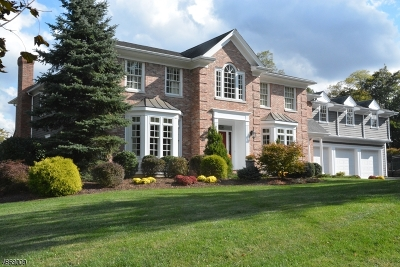 Chatham Twp Single Family Home For Sale: 1 Sycamore Drive
