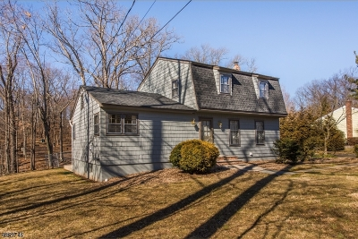 Bernards Twp. Single Family Home For Sale: 69 Mt Airy Rd