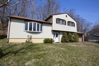 Morris Twp. Single Family Home Active Under Contract: 15 Ellsworth Ave