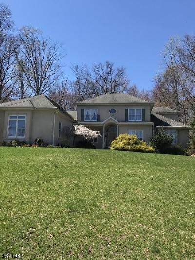 North Haledon Boro Single Family Home For Sale: 4 Split Rock Road
