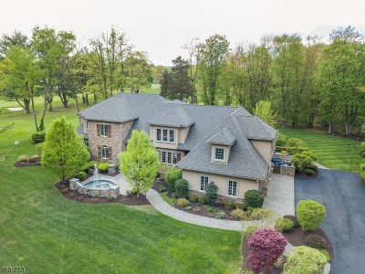 Denville Twp. Single Family Home For Sale: 37 Old Boonton Rd