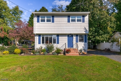 Bridgewater Twp. Single Family Home For Sale: 224 Old York Rd