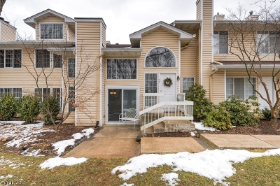 Bedminster Twp. NJ Condo/Townhouse For Sale: $349,999