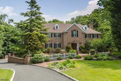 Mountainside Boro Single Family Home For Sale: 18 Breeze Knoll