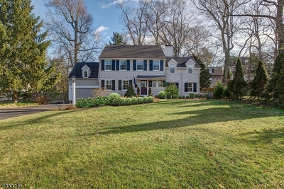 Summit Single Family Home For Sale: 135 Woodland Ave