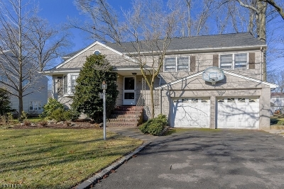 Springfield Single Family Home For Sale: 33 Janet Lane