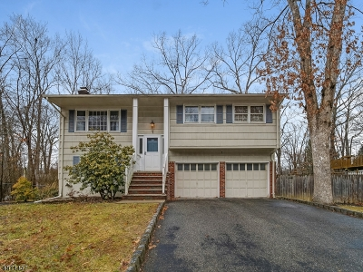 Mount Olive Twp. Single Family Home For Sale: 7 Pheasant Ct