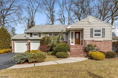 Springfield Single Family Home For Sale: 80 Twin Oaks Oval