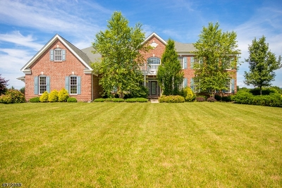 Sussex County Single Family Home For Sale: 39 High Ridge Lane