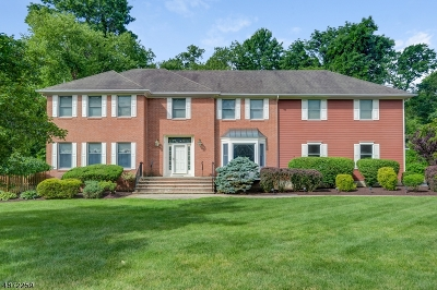 Berkeley Heights Single Family Home For Sale: 17 Magnum Ct