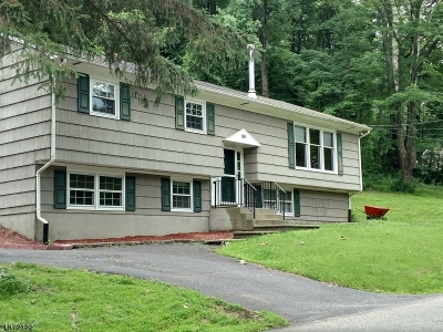 Lebanon Twp. Single Family Home For Sale: 96 Musconetcong River Rd
