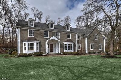 Bernards Twp. NJ Single Family Home For Sale: $1,250,000