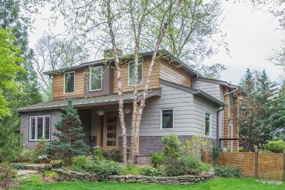 Chatham Boro Single Family Home For Sale: 46 Rowan Rd