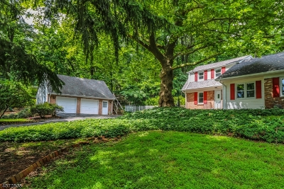 Somerset County Single Family Home For Sale: 121 Round Top Rd