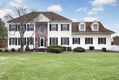 Bernards Twp. NJ Single Family Home For Sale: $1,075,000