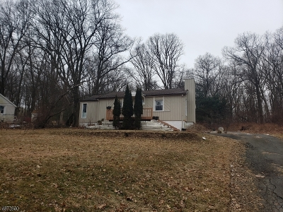 Randolph Twp. Single Family Home For Sale: 128 Dover-Chester Rd