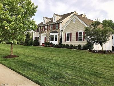 Hanover Single Family Home For Sale: 2 David Dr