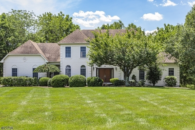 Montgomery Twp. Single Family Home For Sale: 102 Montfort Dr