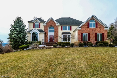 Clinton Twp. Single Family Home Active Under Contract: 14 Foxfire Ln