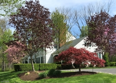 Harding Twp. NJ Single Family Home For Sale: $1,599,000