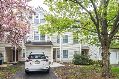 Branchburg Twp. Condo/Townhouse For Sale: 11 Delaware Ln