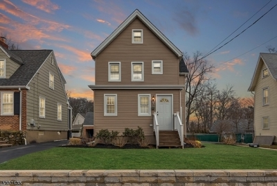 Chatham Boro Single Family Home For Sale: 107 Summit Ave
