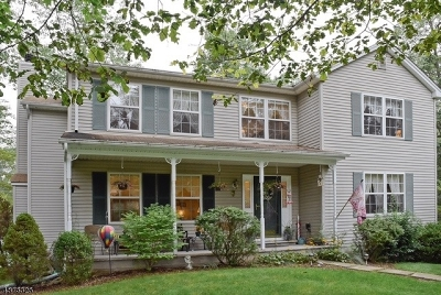 Stanhope Boro Single Family Home For Sale: 10 Elm St