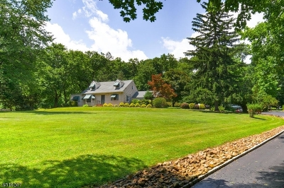 Bridgewater Twp. Single Family Home For Sale: 2153 Washington Valley Rd