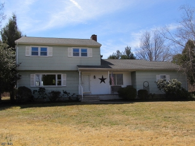 Montgomery Twp. Single Family Home For Sale: 207 Township Line Rd