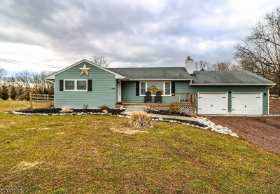 Alexandria Twp. Single Family Home For Sale: 1447 County Rd 519