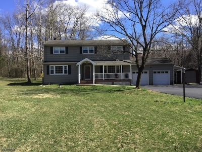 Bridgewater Twp. Single Family Home For Sale: 33 Frohlin Drive