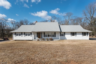 Warren Twp. Single Family Home For Sale: 13 Heritage Dr