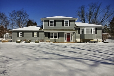Raritan Twp. Single Family Home For Sale: 5 Shady Ln