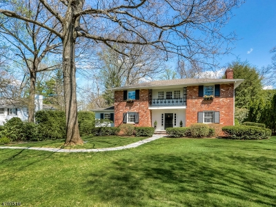 Summit Single Family Home For Sale: 7 Portland Rd