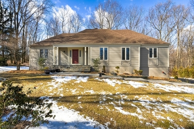 Parsippany Single Family Home For Sale: 48 High Ridge Rd