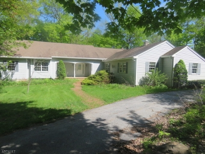 Sussex County Single Family Home For Sale: 10 Higgins Dr