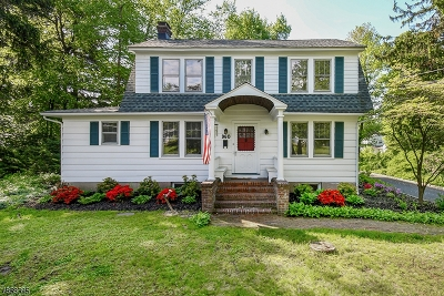 New Providence Single Family Home For Sale: 960 Springfield Ave