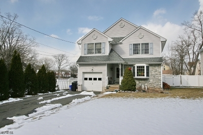 Somerville Boro Single Family Home For Sale: 128 Green St