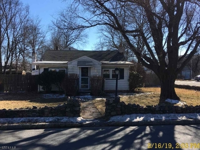 Parsippany Single Family Home For Sale: 101 Lake Shore Dr